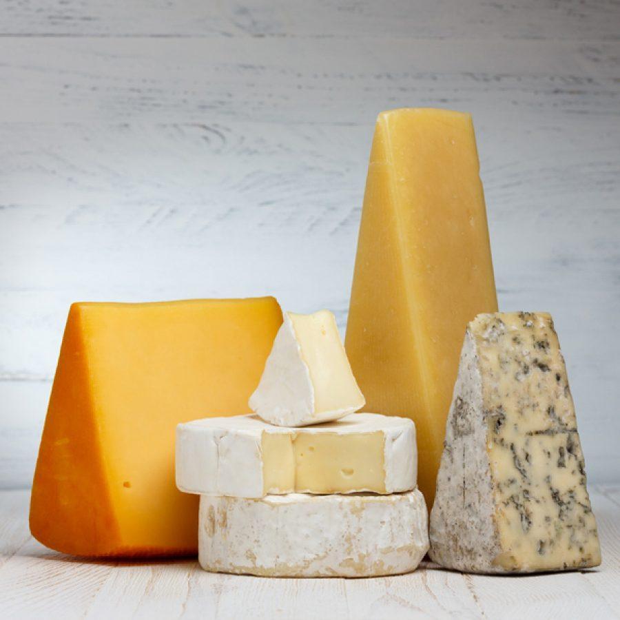 Сырцеха и оборудование для производства сыра